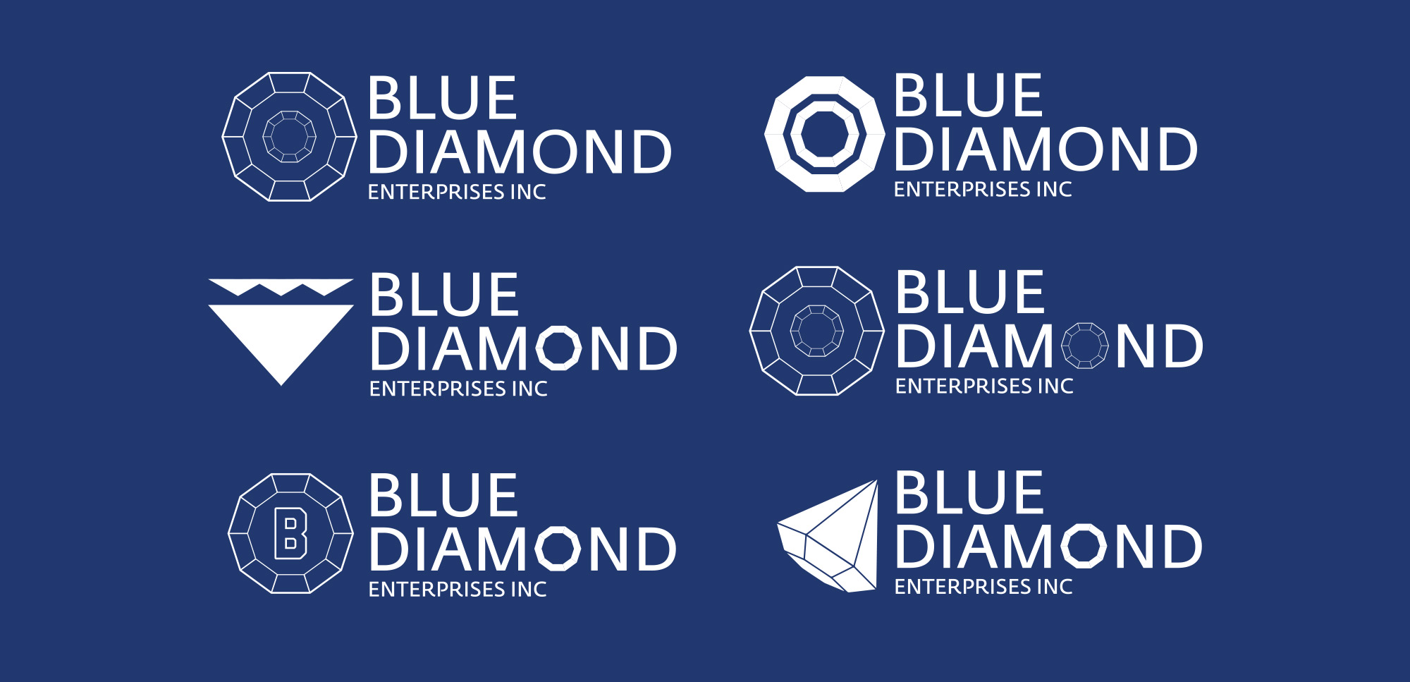 Blue Diamond Enterprise Branding - Rough